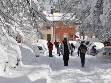 Snow 073